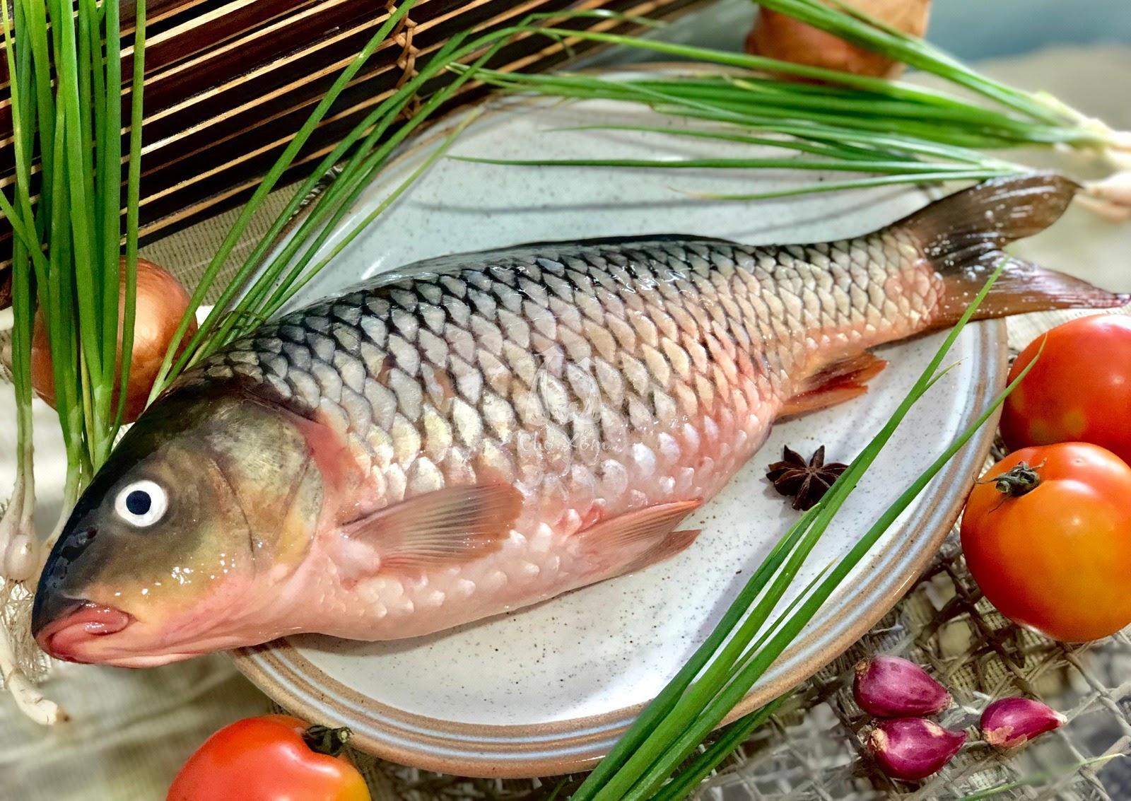 Cá chép chứa nhiều chất dinh dưỡng có lợi cho bà bầu